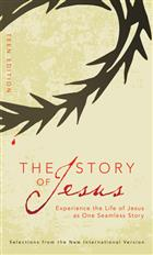 The Story of Jesus: Teen Curriculum